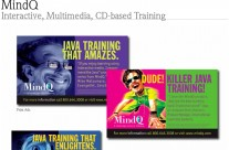 MindQ Training